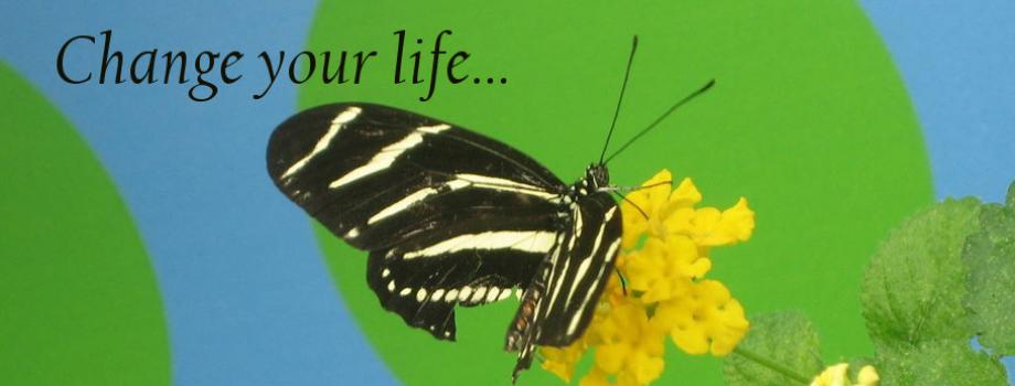 1 Change your life