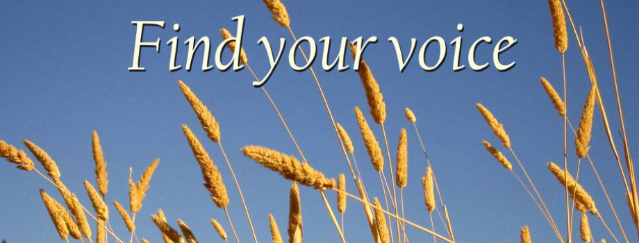 1 Find your voice